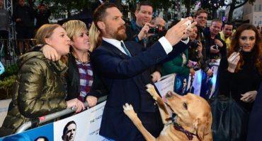 Tom Hardy llegó acompañado de su perro a la premiere de Legend