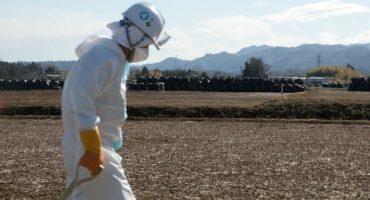 Primer caso de cáncer relacionado con el accidente nuclear de Fukushima