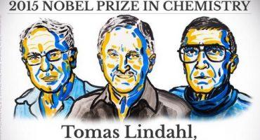 Nobel de Química para científicos que estudian mecanismos de reparación del ADN