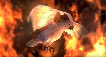 Un asilo se prende en llamas en el video de Youth Lagoon para