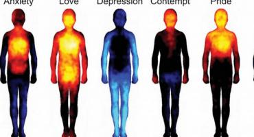 Investigadores finlandeses crean mapa de las emociones en el cuerpo humano