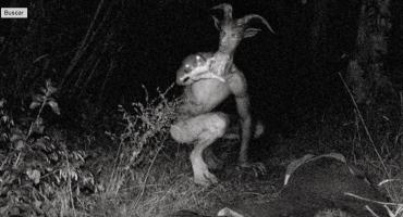 WTF?! El misterio del Hombre Cabra