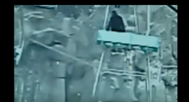 Un hombre casi salta hacia su muerte para acercarse a ver un tigre
