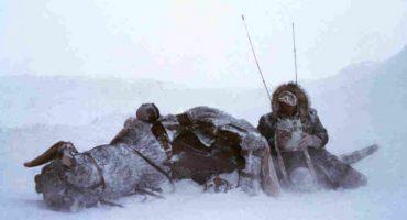 ¿Es posible sobrevivir al frío dentro de un animal muerto?