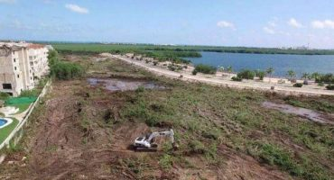 Destruyen manglar en Cancún para construir plaza comercial