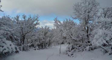 Se esperan nevadas en el Valle de México