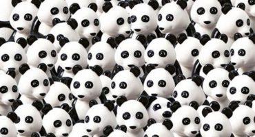 Encuentra al perro entre los pandas