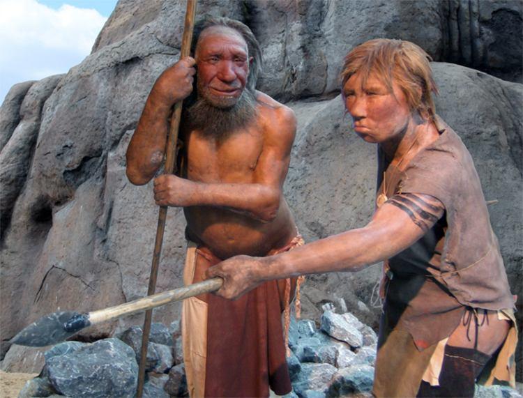 Se descubren más encuentros sexuales entre neandertales y homo sapiens