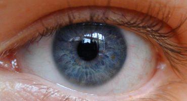 Así ven el mundo las personas con discapacidades y enfermedades visuales