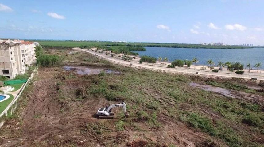 Juez ordena suspensión definitiva en obras del manglar Tajamar