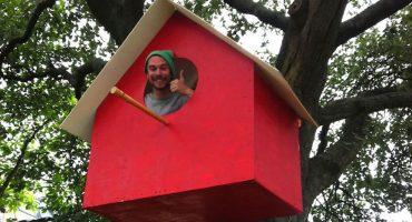 Este hombre hizo miles de casas para aves en diferentes ciudades del mundo