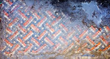 Un hombre encontró accidentalmente una villa romana en su patio