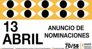 Estos son los nominados a los Premios Ariel 2016