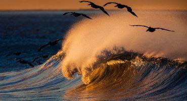 El fenómeno mar de fondo regresa y causará olas de 2.5 metros de altura