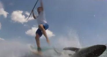 Microinfarto: surfista graba el momento en que choca contra tiburón