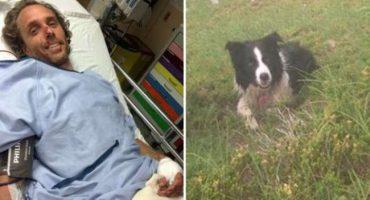Un perro salvó la vida de su dueño, quien fue atacado por un oso