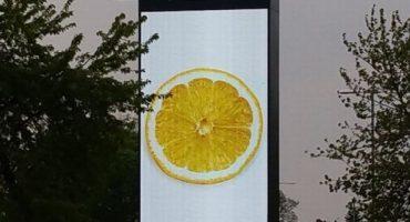 Misteriosos limones aparecen por todo Manchester ¿Nuevo sencillo de Stone Roses?