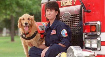 Falleció el último de los perros de búsqueda que participó en el 9/11