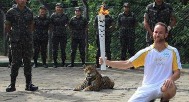 Matan a jaguar del Amazonas durante ceremonia de antorcha olímpica