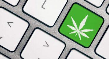 La introducción de Microsoft a la industria de la marihuana legal