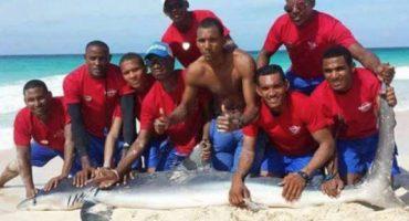 Tiburón muere después de que unos turistas lo sacan del mar para tomar fotos