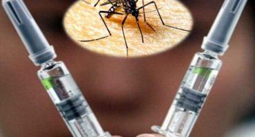 Iniciarán pruebas de la vacuna contra el Zika