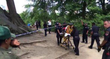 Explosión en Central Park deja a un hombre lesionado
