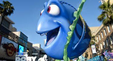 Buscando (en exceso) a Dory: ¿de dónde salen los peces cirujano?