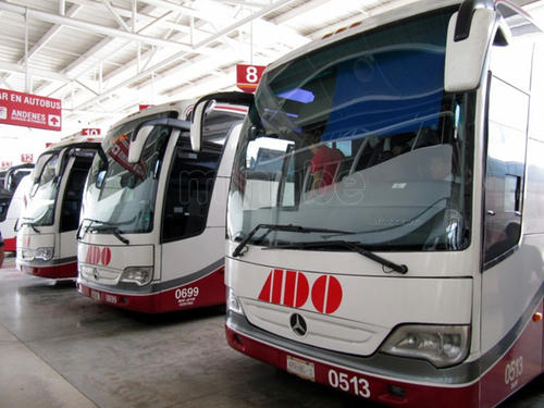 Fortalecen seguridad líneas de autotransporte por medidas migratorias - Quadratín