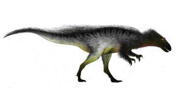 No es broma, los megaraptors existieron y eran tan aterradores como creen