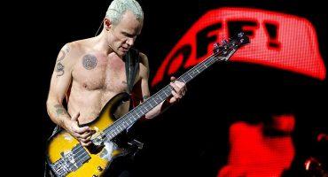 Voten por las bandas que quieren ver en el Corona Capital 2016