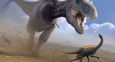 Nuevo estudio revela que el Tiranosaurio Rex no era tan increíble como creíamos