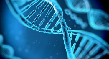 Se presumirá paternidad del hombre que se niegue a prueba de ADN, determina SCJN