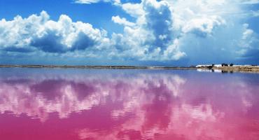 ¿Sabían que hay un lago rosa en México? Chequen estas increíbles fotos