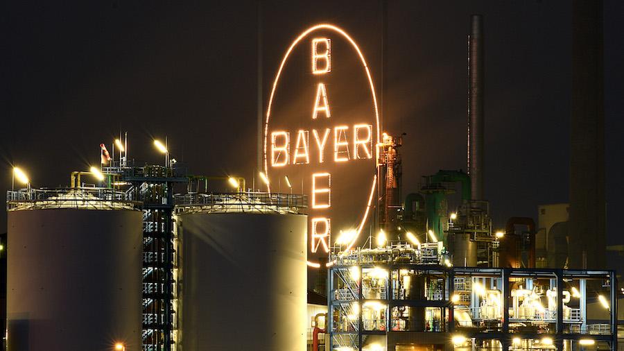 La empresa Bayer busca comprar a Monsanto, los mayores productores de semillas transgénicas en el mundo