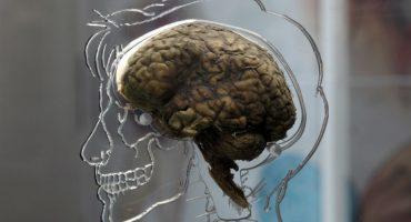 ¡Contaminación cerebral! ¿El smog es causante del Alzheimer?