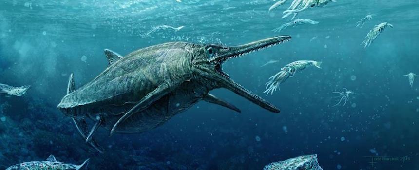 Ictiosaurio 2