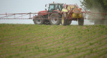 Sector agropecuario no sufrirá (tanto) del