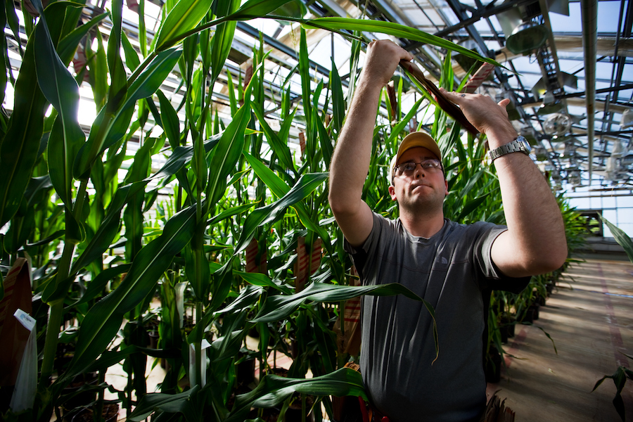 Bayer pierde 10% en la bolsa tras condena a Monsanto