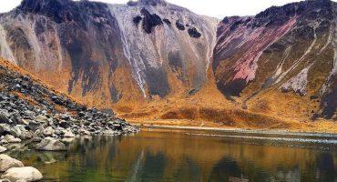 ¿Adiós al Nevado de Toluca? Un tercio de su bosque ya puede ser talado legalmente