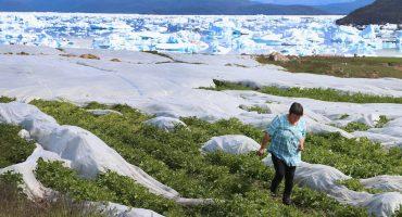 Gracias a una sonda, descubren que Groenlandia se derrite desde abajo