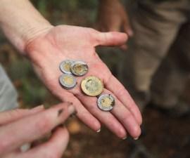 monedas, inflación