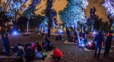 ¿Cansados de lo mismo? ¡Váyanse de Picnic Nocturno a Chapultepec!