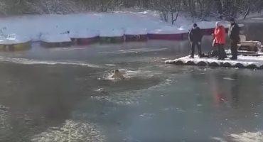 Los héroes existen: hombre se mete a lago congelado para salvar a un perrito