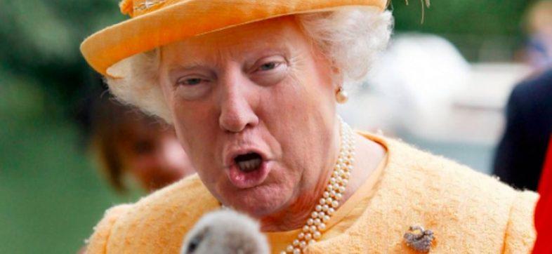 Reina Donald Trump - Portada