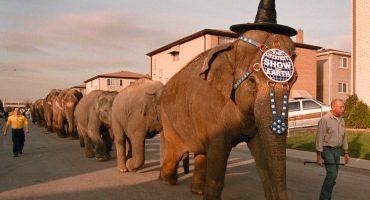 Después de 146 años, el circo Ringling Bros. anuncia su clausura