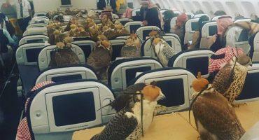 Cuando hay dinero... Príncipe saudí viaja en avión con sus 80 halcones