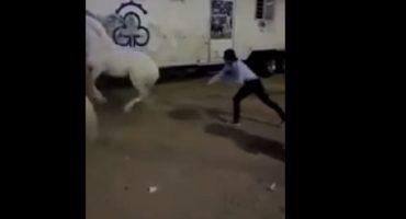 Exhiben a rejoneador golpeando a caballo... es como nalguear a un hijo, dice