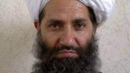 Líder talibán incita a seguidores a plantar árboles... ¿qué?