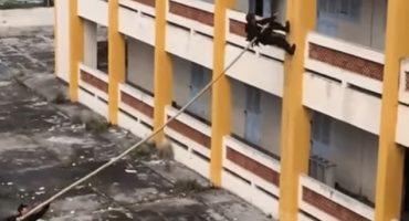 Fuerzas vietnamitas te muestran cómo escalar una pared con una vara
